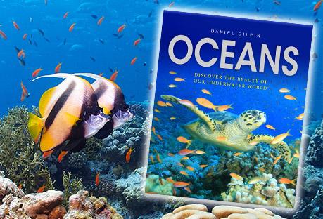 Oceans banner